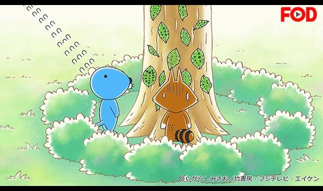 アライグマくんのケサン